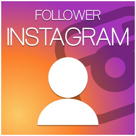 instagram followerws hack